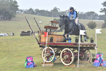 Sarah Clark and 'LV Balou Jeans' are pictured on their way to second place in the Horseland CCI****, with the rain becoming  quite heavy.