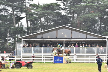 Over the 40 years of Wandin Park competition, the facilities have been continuously upgraded. The relatively new pavilion provides shelter and a good viewing position to watch Kirilee Hosier and 'Regal Red Jasper' ride in to fifth place in the Horseland CCI****.