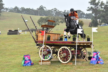 Sam Jeffree was in top form at Wandin. He is pictured riding, 'Woodmount Lolita' to victory in the Horseland CCI****.