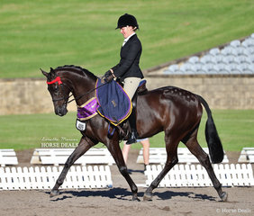 """""""McArthurparc Star Soprano"""" and Belle Ker on the victory lap after taking out Champion Newcomer Open Galloway."""