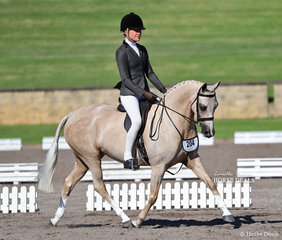 """Hollie McLeod's """"Allira Park Paspaley"""" was ridden by Jess Stones to win Champion Newcomer Show Hunter Pony."""