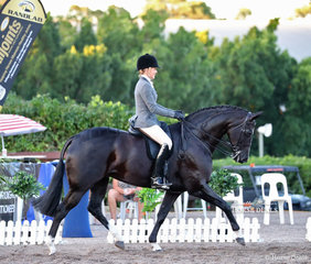 """Steph Barrington and """"Rebelle"""" won the Small Show Hunter Hack Championship."""