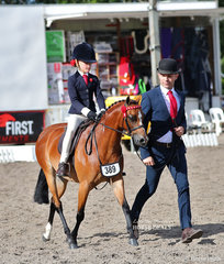 """Matilda Cape riding Lisa Cleary's """"Langtree Jiminy Cricket"""", led by Michael Gates won the Open Leading Rein Pony Championship."""