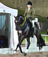 """The EQUESTRIAN NSW Grand Champion Owner/Rider Melissa Harding and  """"Danson Dakota"""". They won an impressive $5,000 in cash as well as $5,000 worth of product."""