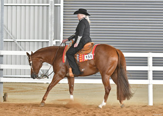 Anne Edwards and I'm Still Hot in the Select Amateur Western Pleasure.