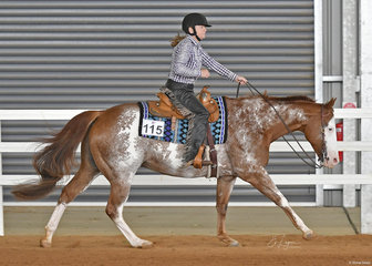 Anne Marshall and Shameelicious in the Senior Horse Ranch Riding