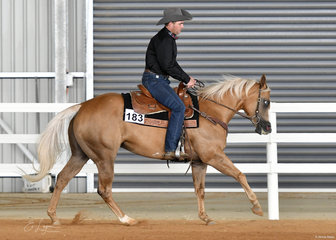 Dylan  Hughes riding GPS Miss Dior in the Junior Horse Ranch Riding.