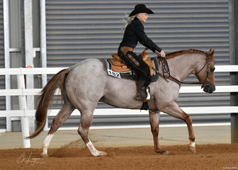 Michelle Garratt riding GPS One Awesome Oak in the Open Ranch Riding.
