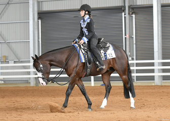 Tomi Elliott riding Let's Get Radicalous in the Youth Horsemanship.