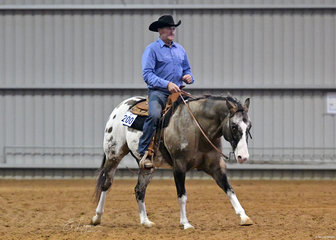 Darren Sinclair and DGS Rocka Song  in the Open Ranch Riding.