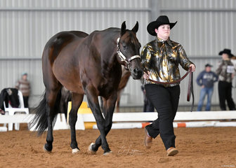 Hotrodder and Jessica Jephson in the Novice Amateur Showmanship Jackpot class.
