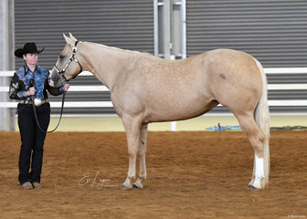 Tina Ponsford with Absolutely Awesome in the Amatuer Owner Paint Bred Mare 4 yrs and Over.
