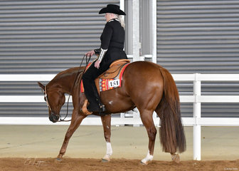 Anne Edwards riding  I'm Still Hot in the  Select Amateur Western Pleasure.