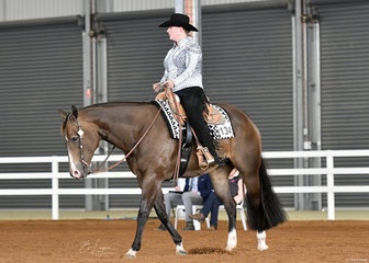 Cindy Calleweart and Good Therapy in the Novice Amateur Horsemanship.