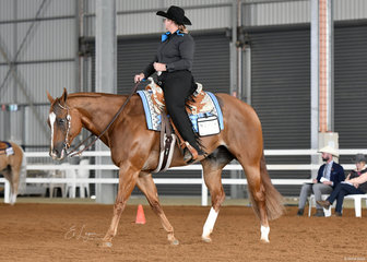 Dee Gavin and DMB Gunslinger in the Senior Horse Horsemanship.