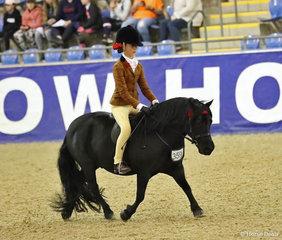 "The DOUGLAS FAMILY QLD Chid's Ridden APSB Shetland Pony Champion ""Oak Park Paramount"" ridden by Annabelle Richardson & owned by Emma Richardson."