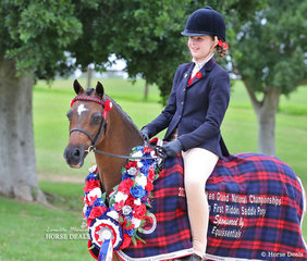 """The EQUISSENTIALS Grand National Champion Child's First Ridden Saddle Pony """"Rocky Hill Prince Charming"""" and Zara Missen."""