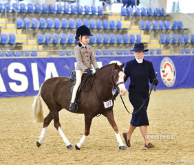 "Louise Dossetor led her pony ""Wyann Safari"" ridden by Chloe Blair in the RPSBS NSW Show Hunter Leading Rein Pony event."