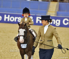 """Sienna Mallen enjoying the ride on """"Eagle Park Showdown"""", led by Naomi Karutz placed Top 10 in the RPSBS NSW Show Hunter Leading Rein Pony."""