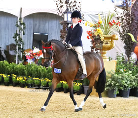 """Placing Top 5 in the MELBROCK PARK Rider 9 & under 12 years class is Rosemary Sutherland riding """"Cimeron Poprock""""."""