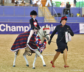 """The TRAYNOR FAMILY Grand National Champion Leading Rein Pony """"Picturesque Prince"""", owned and led by Christine Donnelly, ridden by Zara Donnelly."""