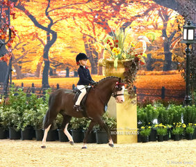 Sienna Nordhausen placed Top 10 in the WESTGROVE RACING Rider 6 & under 9 years event, riding Rivington Pop.
