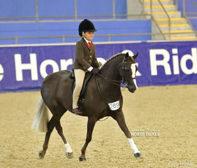 "Samantha Mullen's ""Owendale Beesting"" was ridden by Sienna Wright in the MP GLOSS PRODUCTS Child's Small Show Hunter Pony event."