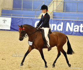 "Bree Petrie's ""Pemberly Whisper""  ridden by Amelia Petrie placed Top 10 in the LANGTREE STUD Child's Large Saddle Pony event."