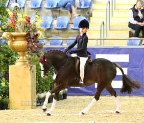 Trixie Warburton working out in the LORELLE MERCER PHOTOGRAPHY Rider 12 & under 15 years event.
