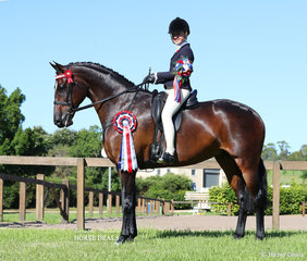 """Tia McKenzie borrowed her mum Sarah's horse """"TS Lady Ashberry"""" for her rider class and was the LORELLE MERCER PHOTOGRAPHY Reserve Champion Rider 12 & under 15 years event."""
