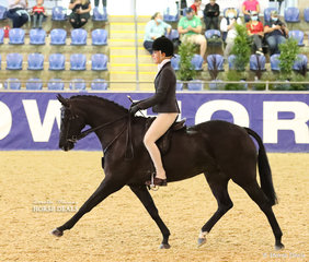 """Sandra Natale's """"Lily's Pageant"""" working out in the GT PERFORMER Large Show Hunter Pony event."""