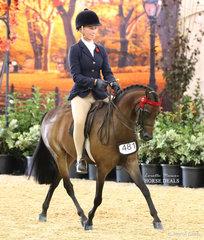 "Bianca Vankampen riding ""Koorana Music Man"" in the ROBBANIE STABLES Small Saddle Pony event."