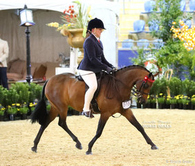 """Top 10 placegetter in the ROBBANIE STABLES Small Saddle Pony event """"Rosedale Matilda"""" and Sarah Young."""