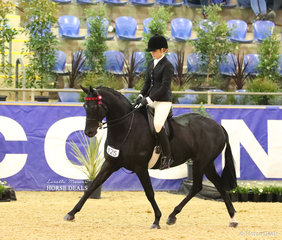 """""""Highgrove Make Believe"""" and Caitlin Fricker competing in the CBC CONSTRUCTIONS Small Galloway event."""