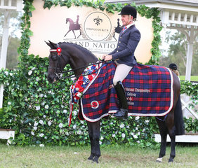 """Michelle McLean's """"Wynara Enigma"""" was ridden by Mark Kenzig to win Champion CBC CONSTRUCTIONS Small Saddle Galloway."""