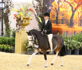 """The CBC CONSTRUCTIONS Grand National Champion Small Show Hunter Pony """"Splash Dance"""" owned by Andrea Merry and ridden by Ella Manning."""