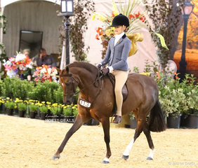 """""""Yartarla Park Mistletoe""""  exhibited by Cassandra Parsons and ridden by Aisha Heinrich  was Top 10 in the CBC CONSTRUCTIONS Small Show Hunter Pony event."""