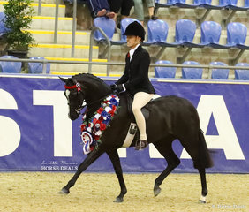 """The McDOWALL FAMILY Grand National Champion Large Saddle Pony went to Catherine Gale's """"Royalwood Enchanting"""", ridden by Margot Haynes."""