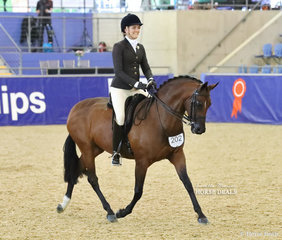 """Top 10 placegetter in the PAUL AUSTIN Large Show Hunter Galloway event """"Beauparc Dreams"""" ridden by Sarah McMaster and owned by Adelaide Jacobs."""