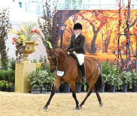 """Sascha Parker-Eade riding """"Hibrie Night Out"""" in the PAUL AUSTIN EQUITATION Large Show Hunter Galloway event."""