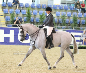 """"""" Dicavalli Royal Glitter"""" and Amanda O'Sullivan competing in the WALFAM INVESTMENTS Small Show Hunter Hack event."""