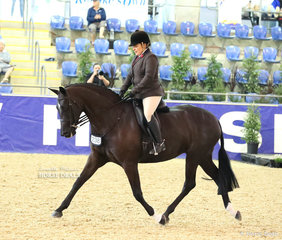 """Abbey Lovell and """"Heathmont Flirt"""" the WALFAM INVESTMENTS Top 10 in the Small Show Hunter Hack event."""