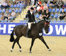 """Lillian Mills riding """"Like A Shark"""" saluting the judges as she leaves the arena after the individual workout in the ROMSEY PARK Large Saddle Horse event."""