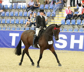 """""""SLM Mercedes"""" and Catherine Neil in the ROMSEY PARK Large Saddle Horse event."""