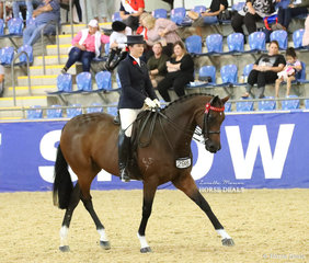 """Stephanie O'Connor riding """"Supreme"""" in the ROMSEY PARK Large Saddle Horse event."""