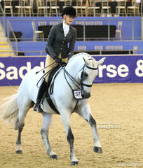 """Top 10 placegetter in the SYDNEY SOLVENTS Large Show Hunter Hack event """"Dicavalli Royal Gustav"""". Exhibited by Sabble Farm and Future Farms, ridden by Jessica Dertell."""