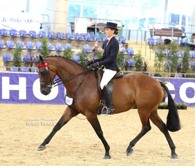 """Eileen Clarke's """"Thamesbury Contendress""""  was ridden by Paige Richards in the M.R. BREECHES Small Saddle Horse event."""
