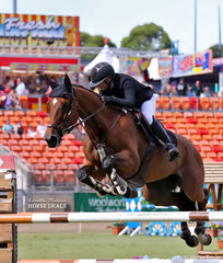Western Australian competitor Chloe Versteegen riding 'Diamond B Vigo'  photographed competing in the Young Riders Grand Prix, earlier they placed fifth in the Young Riders Jumping Contest, One Round Stakes, Table C.