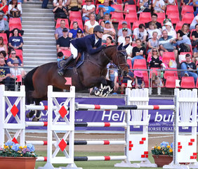 'Vahlinvader' owned and ridden by Aaron Hadlow, pictured during the Table A2 Jumping Contest.