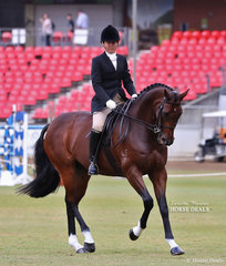 Fourth placegetter in the Ida Buring Rinegolde Turnout class, Stephanie O'Connor riding 'Supreme'.